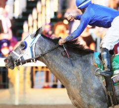 Essential Quality 10/1 Single-Entry Favorite in Kentucky Derby Future Wager Pool 1