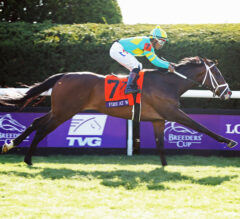 Fire At Will's Long-Term Goal: Turf Triple Series