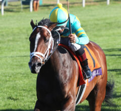 Three Stakes Top Keeneland Opening Day Card
