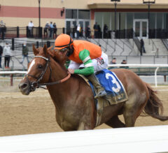 Forza Di Oro Strong Winner in Discovery