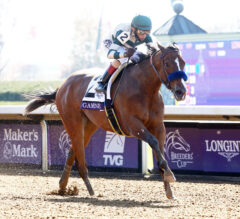 Gamine Scorches Filly & Mare Sprint