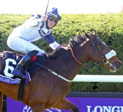 Glass Slippers Upsets Turf Sprint