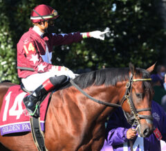 Golden Pal Ready To Shine In Quick Call On Saratoga Opening Day