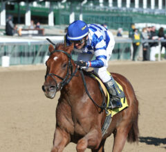 Hidden Stash Works at Keeneland in Kentucky Derby Tuneup