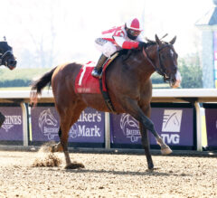 Gotham Preview: Highly Motivated Ready for 3-Year-Old Debut
