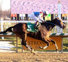 Harpers First Ride, Five Others Win Big at Laurel Park