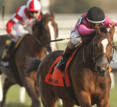 Casse and Hernandez sweep Saturday's graded stakes at Woodbine, including Maple Leaf