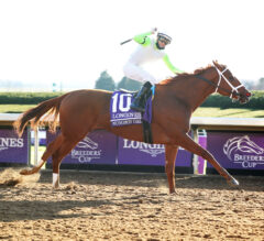 Ranking All 14 Breeders' Cup World Championship Races