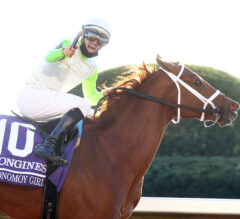 MyRacehorse to Offer Shares in Monomoy Girl, Got Stormy