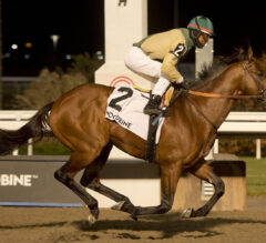 Ride a Comet Leads Casse Exacta in Kennedy Road