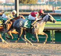 Racing Dudes Divisional Rankings 12/2/20: One Month Remains in Crazy Season