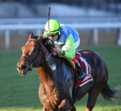 Arrest Me Red apprehends first stakes win with Atlantic Beach score