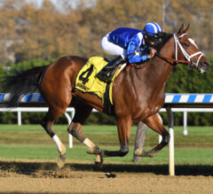 Fresh off milestone win, Pletcher scores again with Malathaat in $100K Tempted