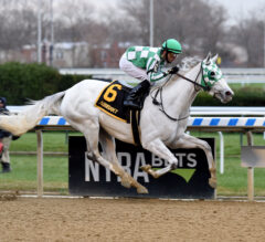 Front-running Mrs. Danvers earns first stakes victory in G3 Comely