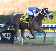 Mucho Macho Man Preview: Pickin' Time Cuts Back