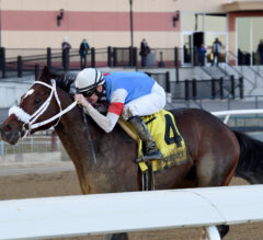 Pickin' Time nabs first graded stakes score in G3 Nashua