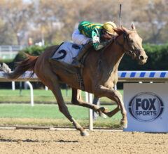 Royal Flag makes the grade in G3 Turnback the Alarm