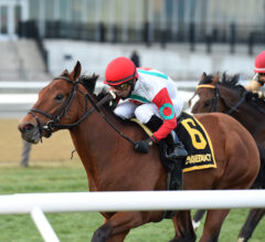 Turned Aside Topples Elders in Aqueduct Turf Sprint Championship