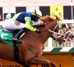 Spectacular Bid Preview: Shackqueenking Aims for Second Straight W