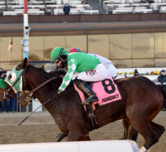 Hold the Salsa closes curtain on fall stakes schedule with win in NYSSS Great White Way
