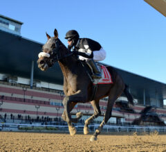 Carmouche secures first NYRA riding title aboard Laobanonaprayer in $250K NYSSS Fifth Avenue
