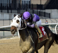 Ladies Handicap Preview: Lucky Move Steps Back Up