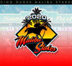 Racing Dudes 2020 Malibu Stakes Wagering Guide and Picks