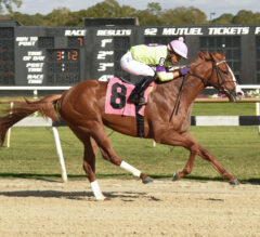 Sam F. Davis Preview: Full Field Takes Aim at Derby Points