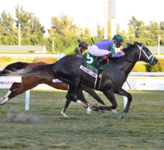 Colonel Liam Leads Pletcher-Trained Exacta in Pegasus World Cup Turf