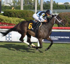 Gulfstream Park Oaks Preview: Con Lima Back On Dirt