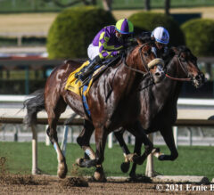 Racing Dudes Three Stars of the Week: Derby Excitement Building