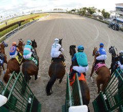 Greatest Honour Draws Post 7, Made 6/5 Favorite For Florida Derby