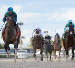 Racing Dudes 2021 Fountain of Youth Wagering Guide and Picks