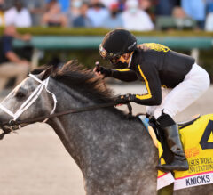 Knicks Go Strong in Pegasus World Cup Victory