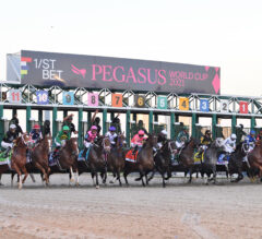 Racing Dudes Three Stars of the Week: Pegasus Weekend Doesn't Disappoint