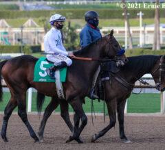 Racing Dudes Three Stars of the Week: Early Derby, Oaks Contenders Emerge