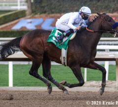 Kentucky Derby Contenders Pedigree Analysis: Life Is Good