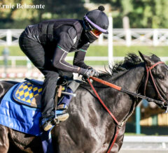 Medina Spirit Set For Santa Anita Derby