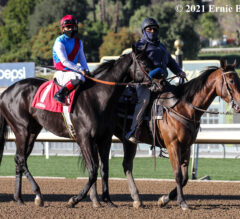 Medina Spirit, Beautiful Gift Fancied For Saturday's Santa Anita Derby, Oaks