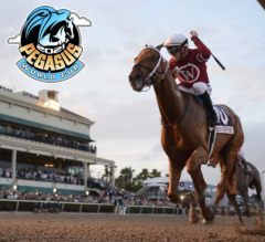 Racing Dudes 2021 Pegasus World Cup Wagering Guide and Picks Presale