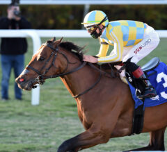 Ride a Comet Unleashes Solid Kick in Tropical Turf