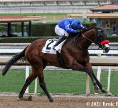 The Great One Eyes Santa Anita Derby