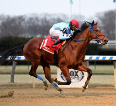 Withers Preview: New York's Derby Series Continues