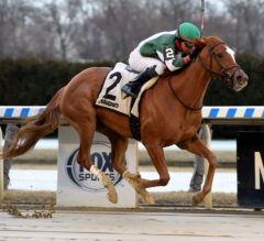 Secret Love shows heart to pull upset win in Franklin Square