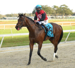 Tampa Bay Derby Preview: Can The Candy Man?