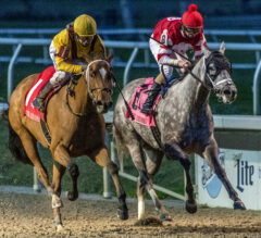Fair Grounds Oaks Preview: Clairiere, Travel Column Ready To Rumble