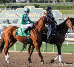 Fashionably Fast Heads Sunday's Santana Mile