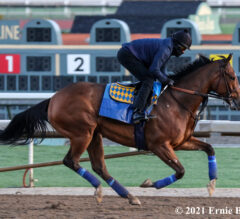 Breeders' Cup Champ Gamine Resurfaces in Sunday's Las Flores