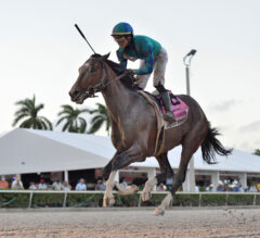 Florida Derby Preview: Greatest Honour Tries For Sweep