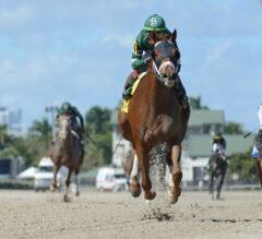 Known Agenda Works For Florida Derby